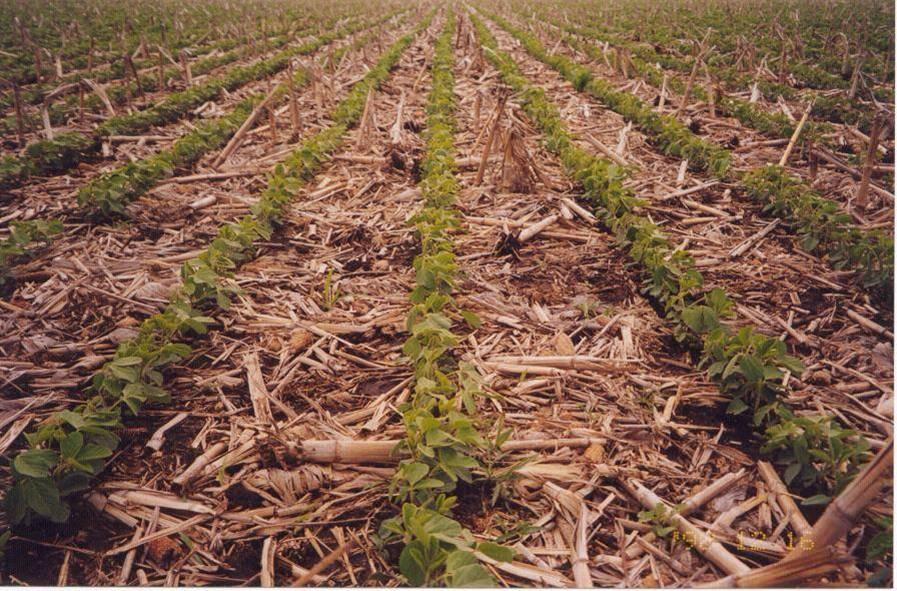 Se viene una Ley de conservación de los suelos