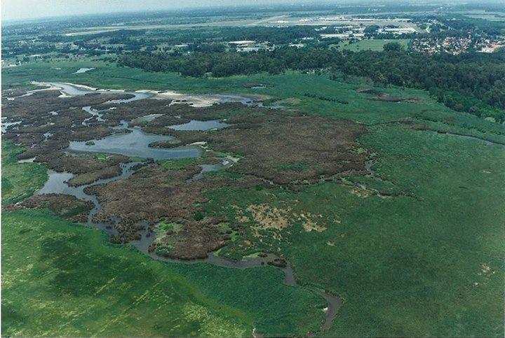 Más del 20% del territorio nacional son humedales