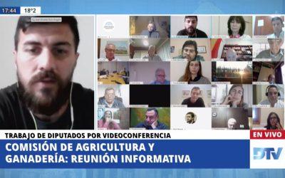 LOS PRESIDENTES DE SENASA E INTA EXPUSIERON EN DIPUTADOS
