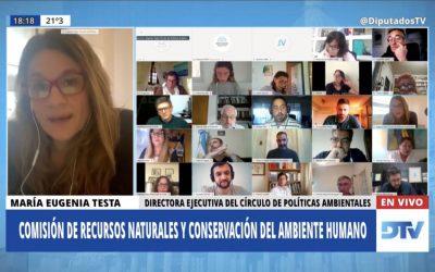 LEY DE HUMEDALES: CUARTA JORNADA INFORMATIVA EN DIPUTADOS