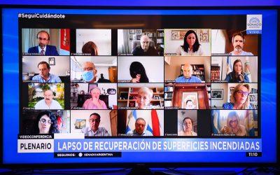 SENADO: DICTAMEN PARA EL PROYECTO QUE MODIFICA LA LEY DE MANEJO DE FUEGO