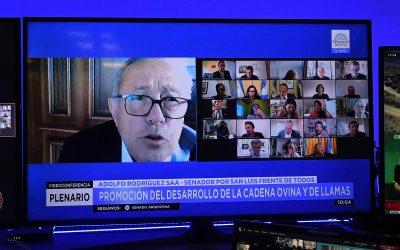 DICTAMEN FAVORABLE PARA LA PRÓRROGA DE LA LEY DE GANADERÍA OVINA Y CAPRINA