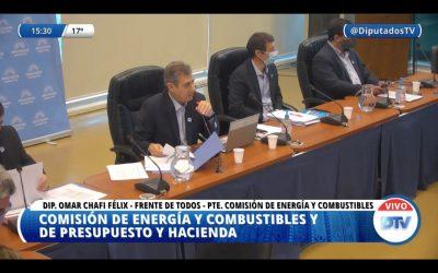 DIPUTADOS: DICTAMEN FAVORABLE PARA EL PROYECTO OFICIALISTA DE BIOCOMBUSTIBLES