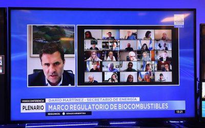 SIGUE AVANZANDO EL NUEVO PROYECTO DE BIOCOMBUSTIBLES