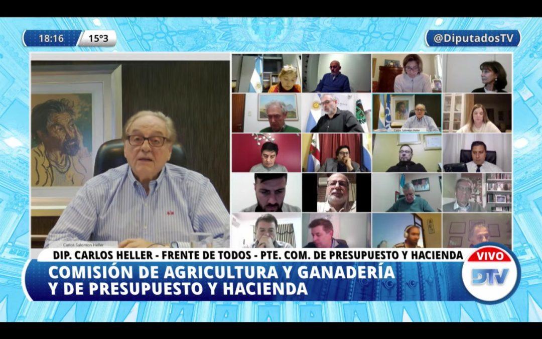 DIPUTADOS: DICTAMEN FAVORABLE PARA EL PROYECTO DE LEY OVINA